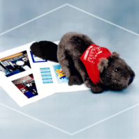 SCM Convention Promotion Imprinted Toy Beaver