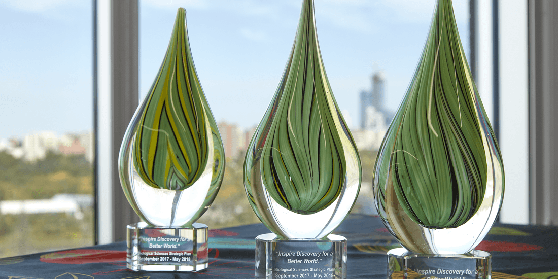 Awards created for the University of Alberta promotion