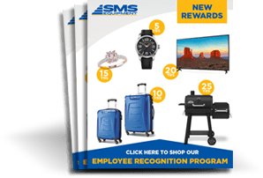 Feature of email campaigns for an online employee recognition program