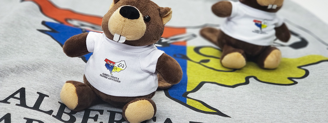 branded blanked hoodies and beavers for Indigenous cultural events