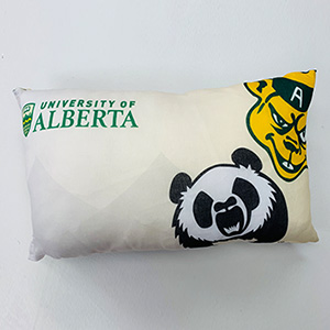 branded pillow cushion with team and university logos