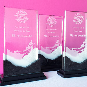 custom branded company core values awards