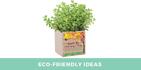 eco-friendly product ideas for custom swag boxes